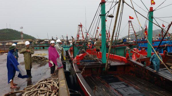 Tàu bè neo đậu không bị ảnh hưởng cơn bão số 3
