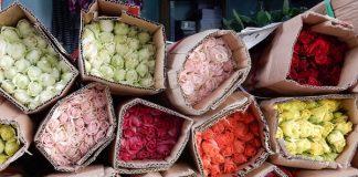 thị trường hoa tươi
